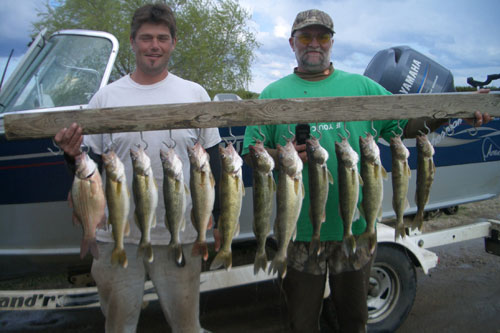 Spring walleye bite south dakota walleye fishing guide for Lake thompson sd fishing report