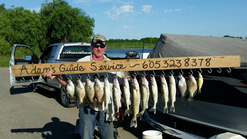 Lake thompson june 23 2016 south dakota walleye fishing for Lake thompson sd fishing report