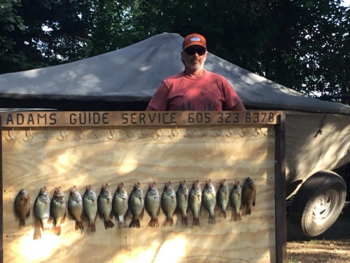 Crappie and bluegill summer fishing