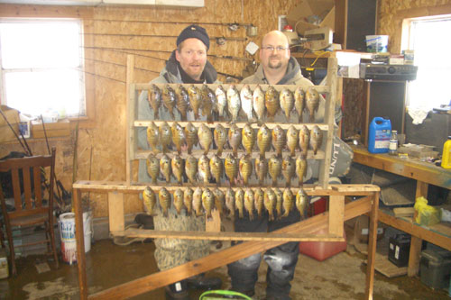 Eric of Sioux Falls and I did a number on these gills using waxies, through the ice
