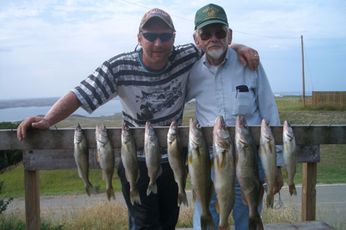 In memory of great-uncle Ralph - a great day of walleye fishing
